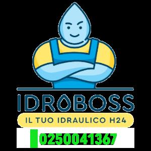 Spurgo WC Affori Milano